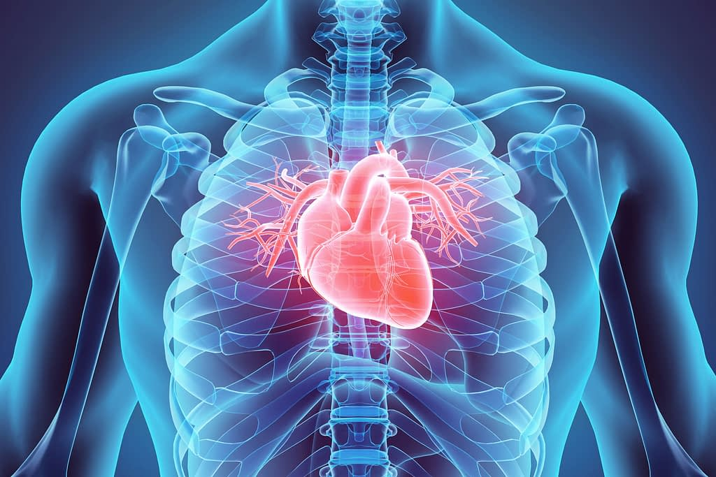 heart graphic Dana Point CA