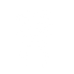 bone grafting icon MONTCLAIR, NJ